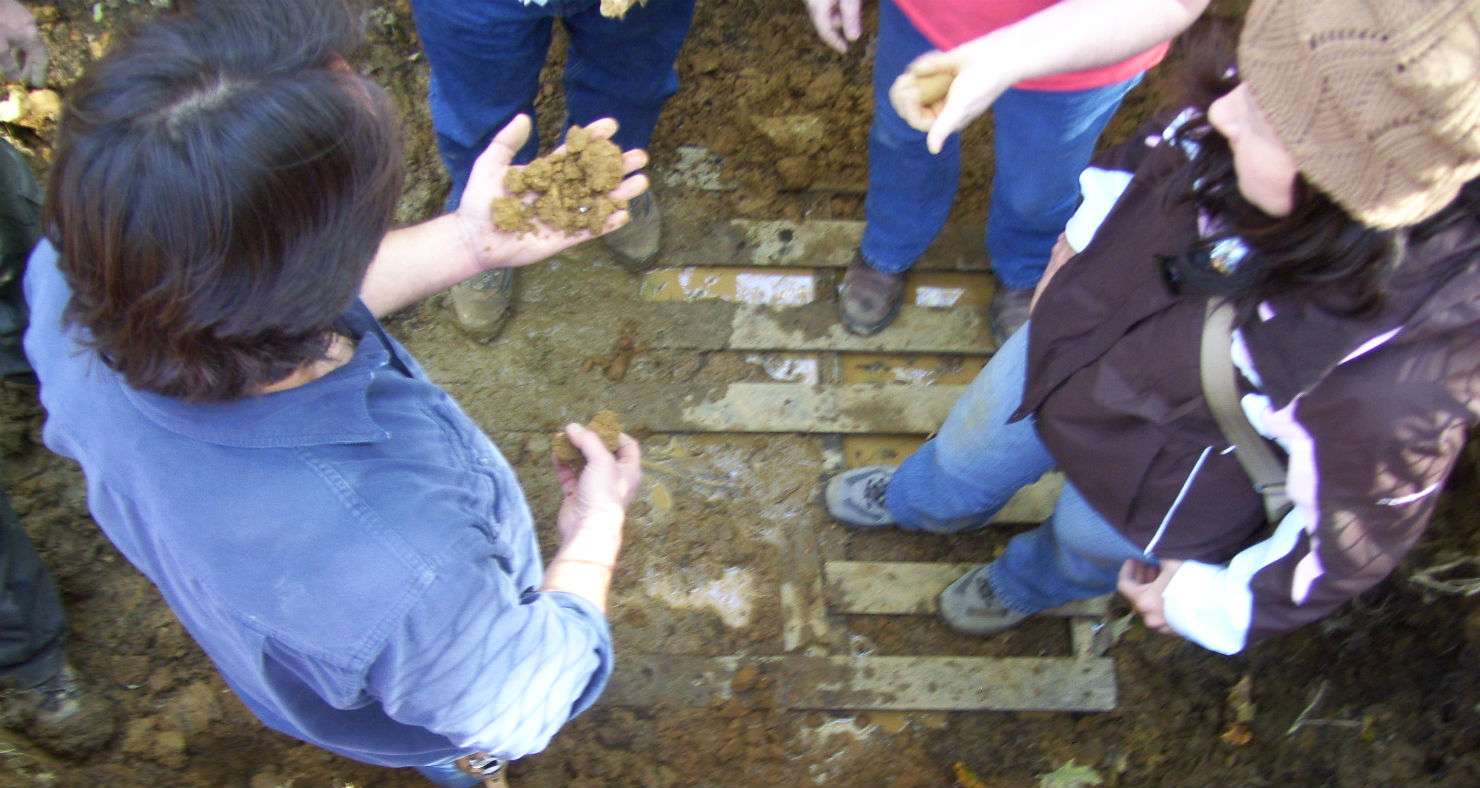 Showing what to look for in the soil sample