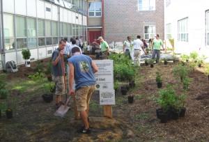 Rain garden at Central Regional High School