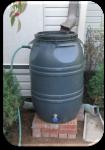 Rain Barrel (Rutgers Materials)
